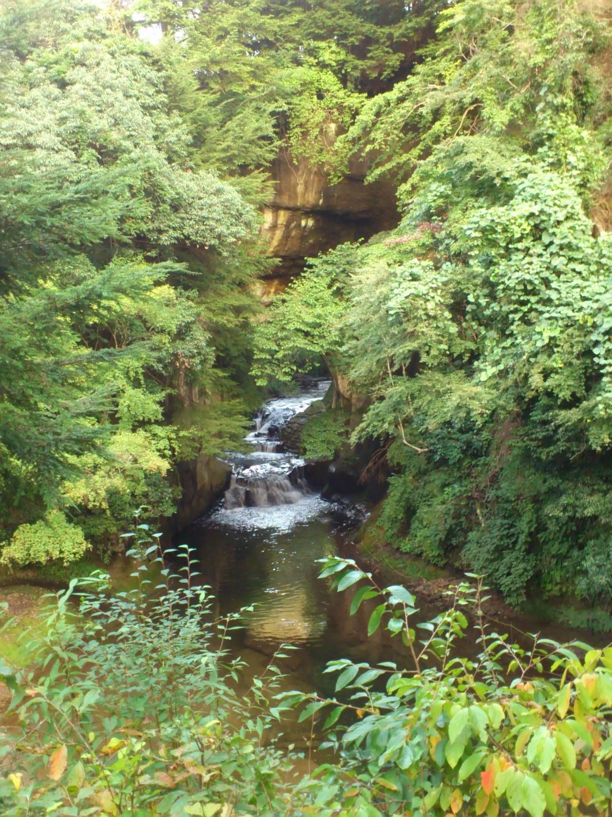 VINICE CLUBダイアリー さっちーの「濃溝の滝」をUPしました。