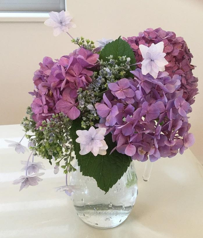 ネットでレッスン「紫陽花の種類」をUPしました。
